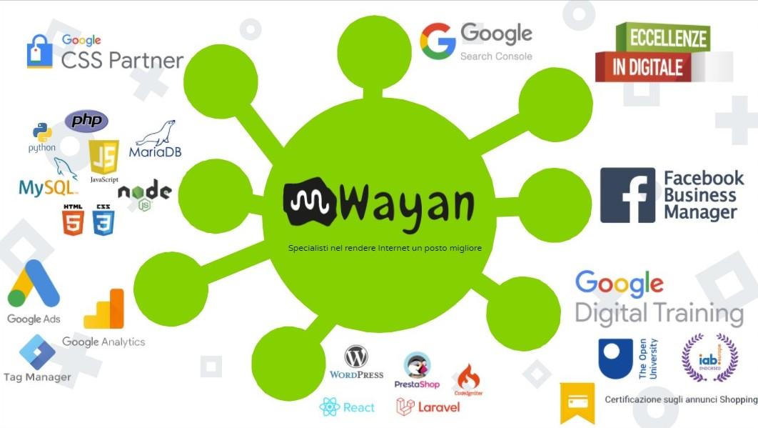 wayan google partner